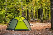 Scenic Forest Campsite And The Modern Green Igloo Style Tent. Recreational And Travel Theme. poster