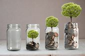 Money Coins And Tree Growing In Jar. Profit On Deposit In Bank And Dividend For Stock Investment Con poster