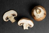 Group Of One Whole One Half One Slice Of Fresh Brown Mushroom Champignon Flatlay On Grey Stone poster