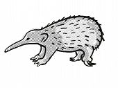 Retro Cartoon Mono Line Style Drawing Of A Western Long-beaked Echidna, An Endangered Wildlife Speci poster