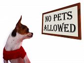 pic of allowance  - No Pets Allowed Sign Shows Unauthorized Forbidden Zone - JPG