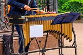 Street Musician Playing A Xylophone In City Park poster