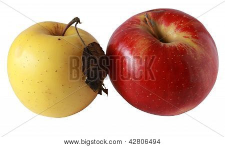 Two Apples.jpg