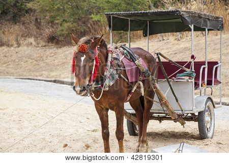 Chinese horse-drawn carriage