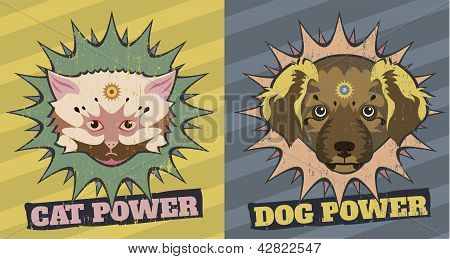Cat And Dog Power