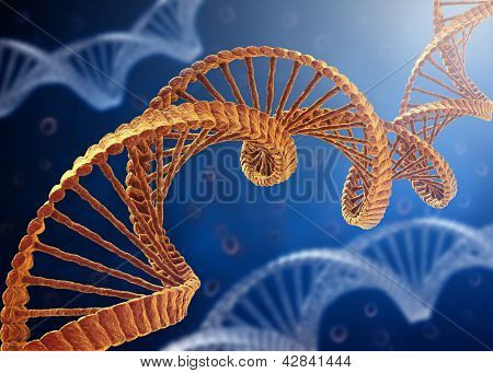 DNA Concept