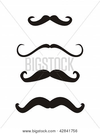 Set of vector curly vintage retro gentleman mustaches.