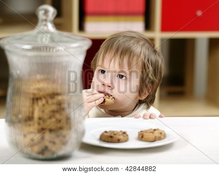 Little Boy Eating Cookies