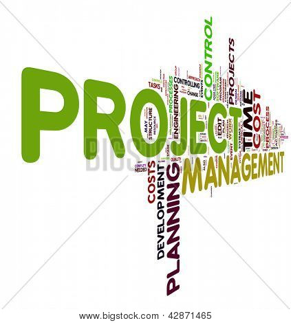 Project management concept in word tag cloud
