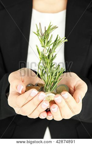 Woman hands with green plant and coins, close up