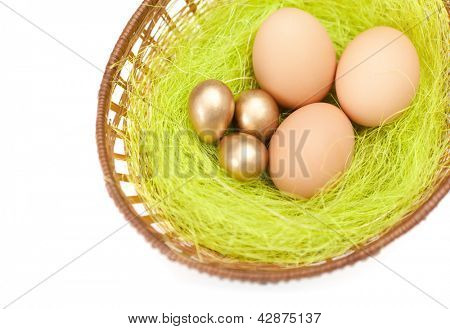 Brown and golden easter eggs are in braided basket with sisal green fibre, isolated on white