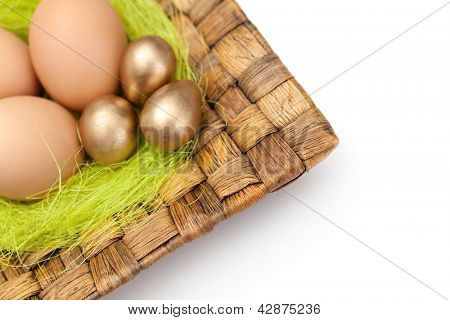 Brown and golden easter eggs are on wattled plate with sisal green fibre, isolated on white