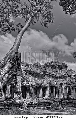 Black And White Angkor Wat Photo