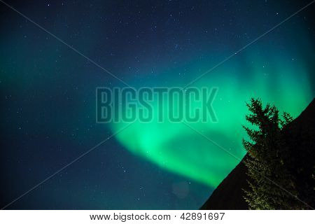 Northern Lights Rising