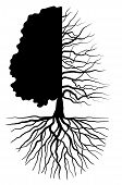 pic of dead-line  - Tree silhouette concept symbolizing the seasons - JPG