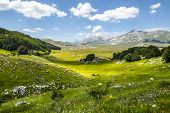 picture of pasture  - Campo Imperatore  - JPG