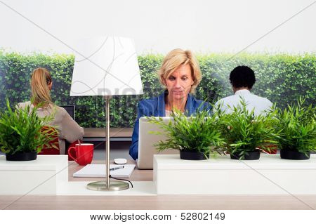 Business woman working in a green hot desk flexible office space