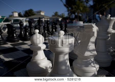 Chess Game In Cuba