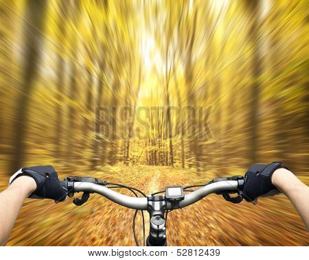 Mountain biking down hill descending fast on bicycle. View from bikers eyes