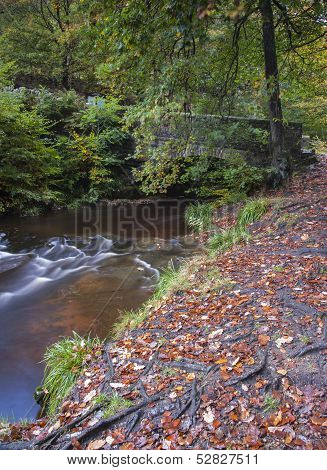 old stone bridge in yorkshire autumn woodland
