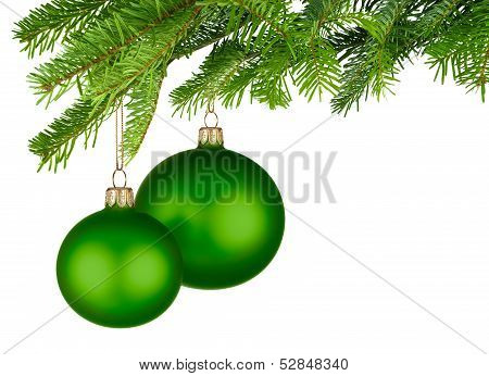 Green Christmas Baubles Hanging From Fresh Green Twigs