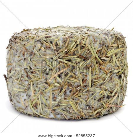 a handmade rosemary-coated cheese from Spain, on a white background