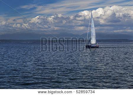Sail Boat on the Salish Sea