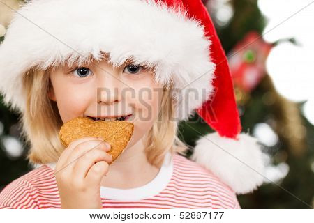 Boy In Santa Hat Eating Gingerbread