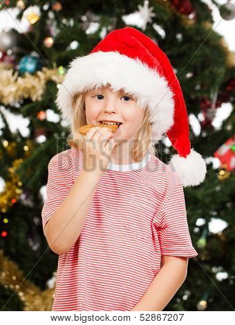 Santas Helper Eating Gingerbread