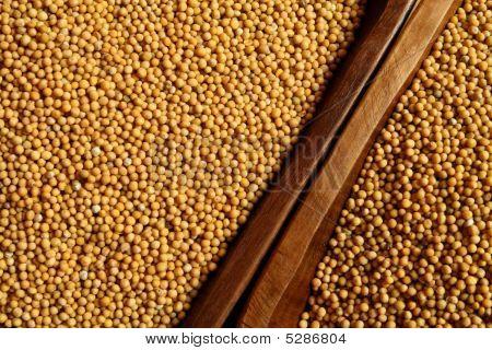 Mustard Background
