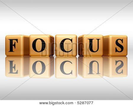 Focus With Reflection