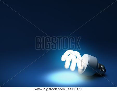 Compact Fluorescent Bulb - Resting On Ground