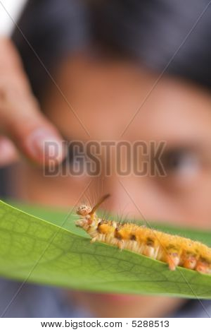 Student Interacts With Caterpillar