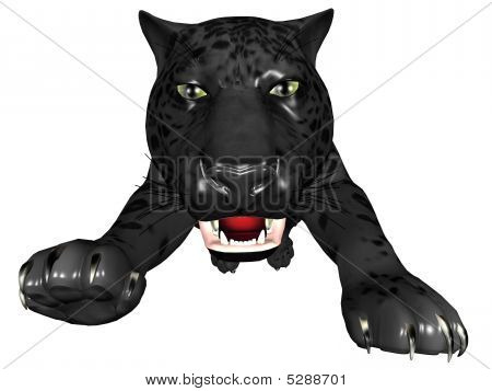 Attacking Black Panther
