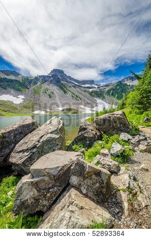 Fragment of Mount Baker trail in, Washington, USA