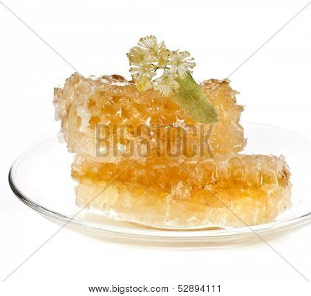 sweet linden honey in the tea saucer isolated on white background