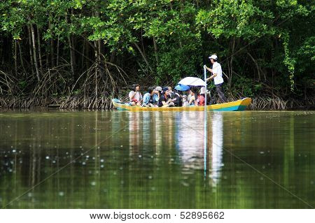 traveller in ecotourism