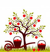 foto of hand-barrow  - vector apple tree and hand barrow with basket of apples - JPG