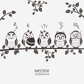 image of emoticons  - illustration of five silhouette funny emoticon owls sitting on a branch - JPG