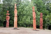 picture of indian totem pole  - Group of Mapuchean totems at a park in Temuco Chile - JPG