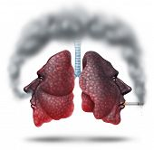 image of bans  - Second hand smoke health care concept for cigarette smoking risks with human lungs in the shape of a head with one smoker and another innocent victim lung breathing the toxic fumes turning the organ black - JPG