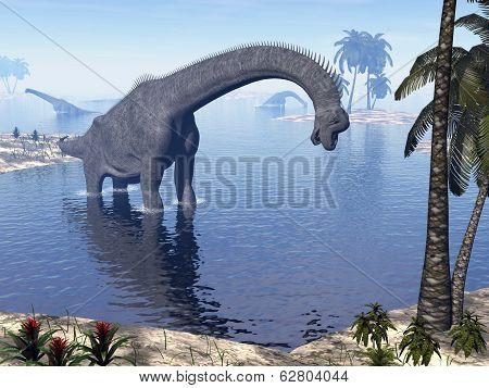 Brachiosaurus dinosaur in water - 3D render