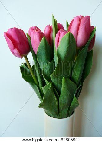 Vase of pink tulips