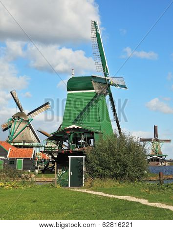 Countryside - an ethnographic museum in the Netherlands. Three windmills and farm buildings on a green meadow