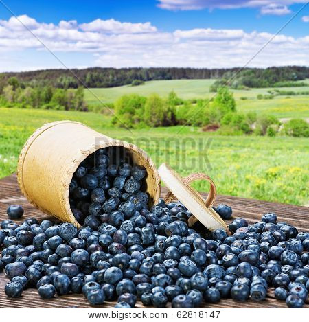 Blueberries In A Basket Is Scattered On The Table