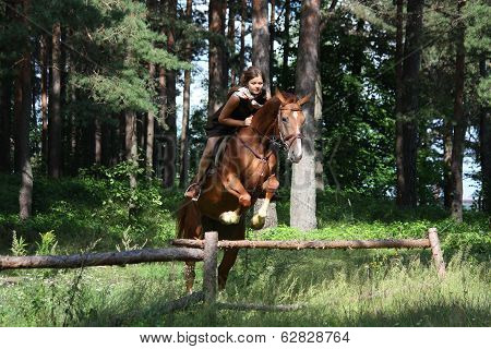 Teenager Girl Jumping Over The Fence With Horse