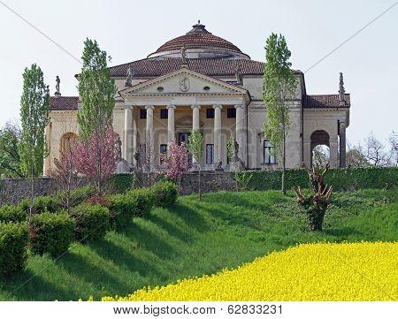 Villa La Rotonda With Yellow Flower Field O F Rapeseed In Vicenza 5