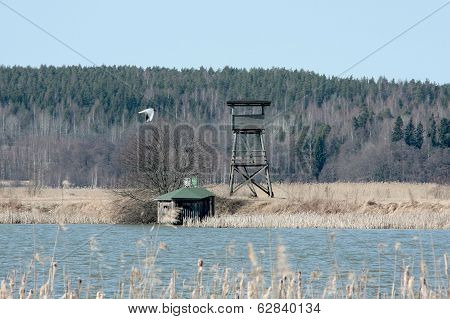 Bird watching location