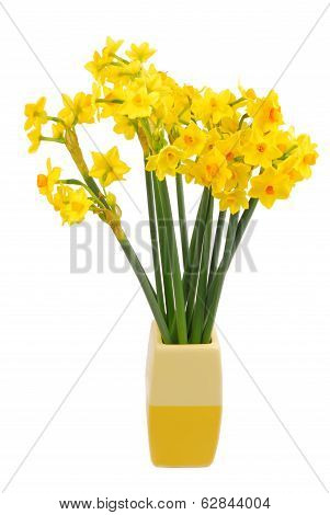 bouquet of daffodils flower
