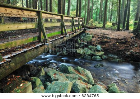 Wood Bridge In Lynn Valley Forest